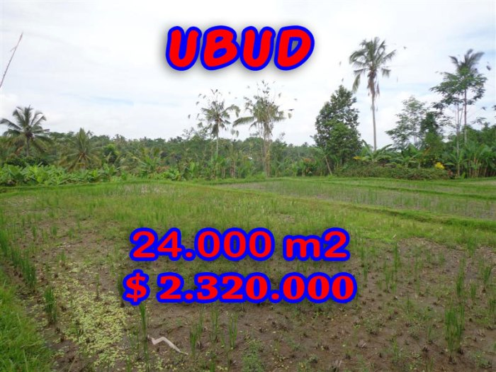 Spectacular Property for sale in Bali, land for sale in Ubud Bali – TJUB262