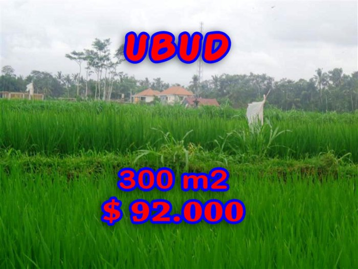 Property in Bali for sale, rice paddy view land for sale in Ubud Center – TJUB282