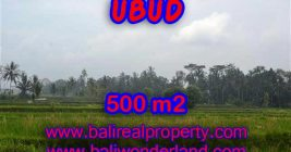 Magnificent Property in Bali for sale, land in Ubud Bali for sale – TJUB363