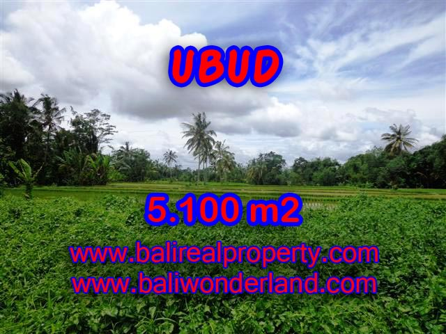 Land in Bali for sale, extraordinary view in Ubud Tegalalang – TJUB368