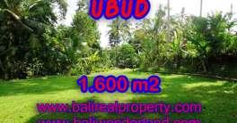 Land for sale in Ubud Bali, Wonderful view in Ubud Center – TJUB416