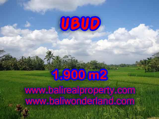 Land in Ubud Bali for sale, Exotic view in Ubud Payangan – TJUB403