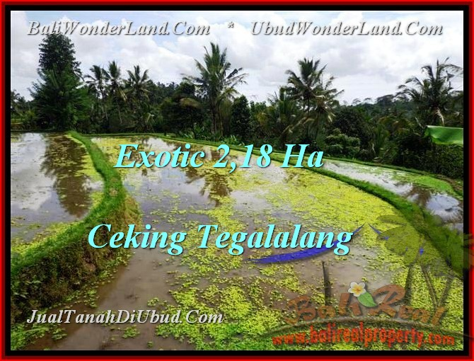 Beautiful PROPERTY 21,800 m2 LAND SALE IN UBUD BALI TJUB471