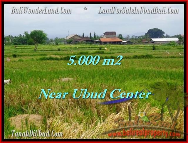 Beautiful PROPERTY 5,000 m2 LAND SALE IN UBUD BALI TJUB474