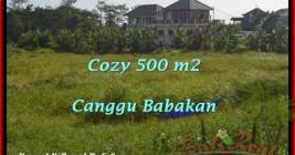 Magnificent 500 m2 LAND FOR SALE IN CANGGU TJCG179