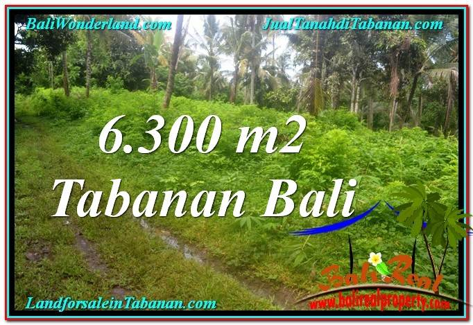 Exotic LAND IN TABANAN FOR SALE TJTB313