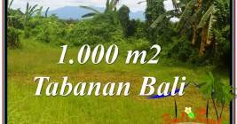 Beautiful PROPERTY 1,000 m2 LAND SALE IN Tabanan Selemadeg TJTB311