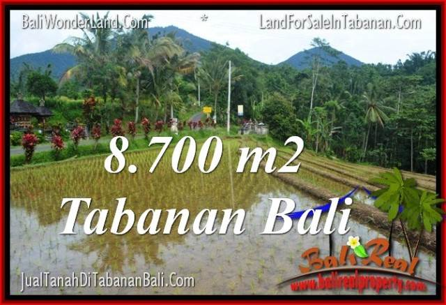 FOR SALE Magnificent PROPERTY 8,700 m2 LAND IN TABANAN TJTB316