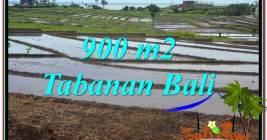 Beautiful PROPERTY LAND SALE IN TABANAN BALI TJTB308