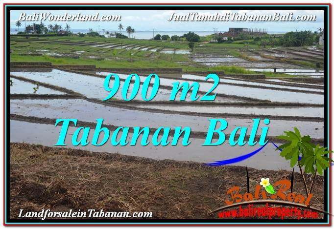 Magnificent PROPERTY Tabanan Selemadeg BALI 900 m2 LAND FOR SALE TJTB308