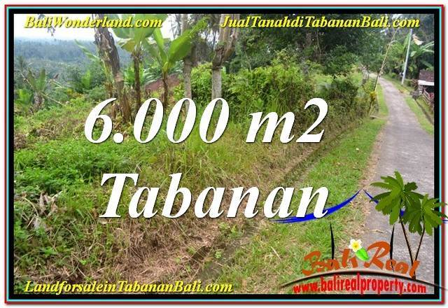 FOR SALE Magnificent PROPERTY 6,000 m2 LAND IN TABANAN TJTB349