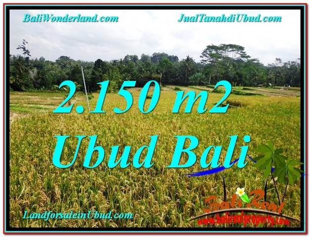 Affordable PROPERTY LAND IN Ubud Tegalalang BALI FOR SALE TJUB606