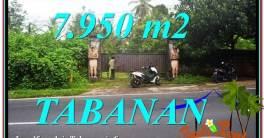 Beautiful LAND IN TABANAN FOR SALE TJTB331