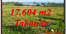 Magnificent PROPERTY 17,604 m2 LAND SALE IN TABANAN TJTB342