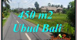 FOR SALE Magnificent 450 m2 LAND IN UBUD BALI TJUB647