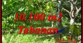 Affordable TABANAN LAND FOR SALE TJTB360