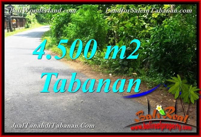 Exotic 4,500 m2 LAND IN TABANAN FOR SALE TJTB380