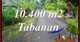 Beautiful PROPERTY 10,400 m2 LAND IN Tabanan Selemadeg Timur BALI FOR SALE TJTB369