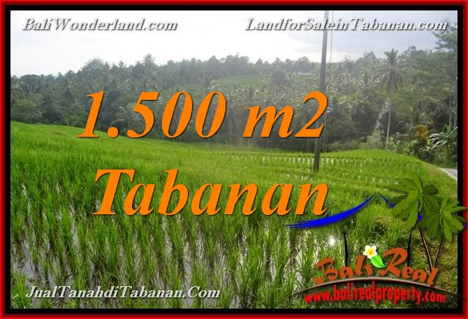 FOR SALE Affordable PROPERTY 1,500 m2 LAND IN Tabanan Selemadeg TJTB375