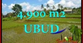 Exotic 4,900 m2 LAND SALE IN UBUD TJUB652