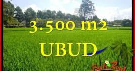 Magnificent PROPERTY 3,500 m2 LAND SALE IN UBUD BALI TJUB660