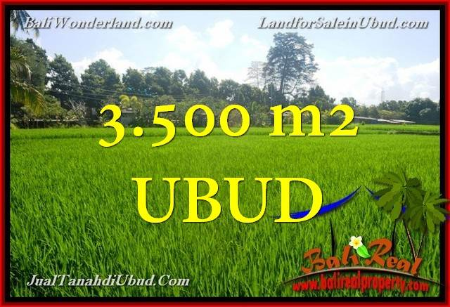 Beautiful 3,500 m2 LAND FOR SALE IN UBUD BALI TJUB660