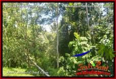 Beautiful UBUD BALI 2,456 m2 LAND FOR SALE TJUB654