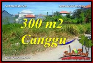 Exotic 300 m2 LAND IN CANGGU BALI FOR SALE TJCG225