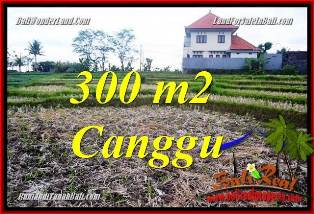 Magnificent PROPERTY CANGGU BALI 300 m2 LAND FOR SALE TJCG230