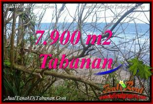 Cheap property 7,900 m2 LAND FOR SALE IN TABANAN SELEMADEG BALI TJTB392