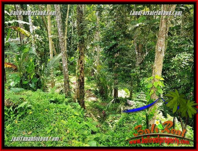 Beautiful 860 m2 Land in Ubud Tegalalang for sale TJUB691