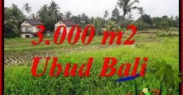Exotic 3,000 m2 Land for sale in Ubud Tegalalang TJUB698