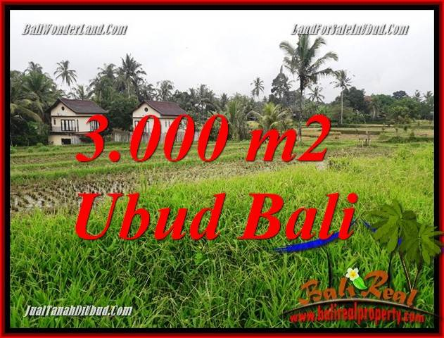 Exotic Property 3,000 m2 Land for sale in Ubud Tegalalang Bali TJUB698