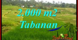 Affordable Property Tabanan Selemadeg 2,000 m2 Land for sale TJTB396