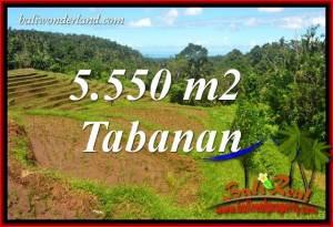Beautiful Land for sale in Tabanan TJTB405