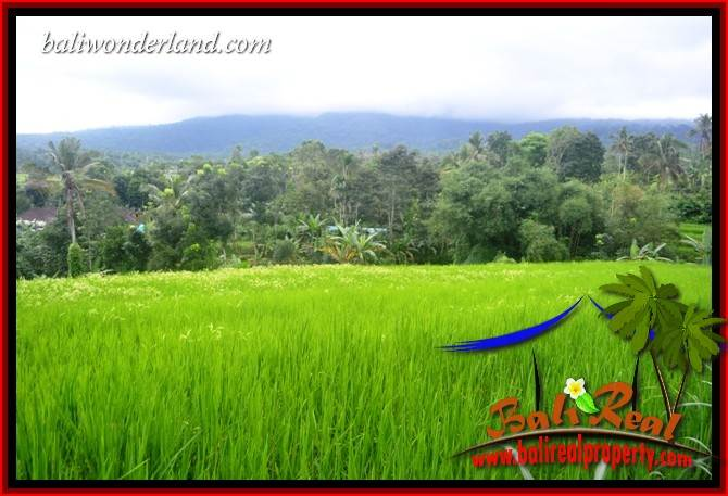 Land in Tabanan for SALE, Land for sale in Tabanan Bali, Property for sale in Tabanan, Property in Tabanan for sale, Land for sale in Bali, Land in Bali for sale, Property for sale in Bali