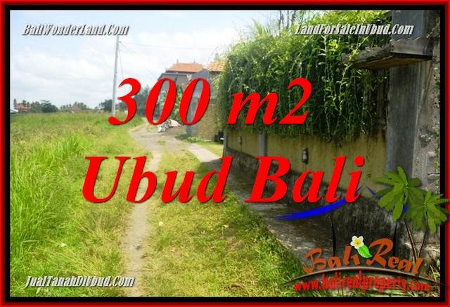 Exotic 300 m2 Land in Ubud Bali for sale TJUB687