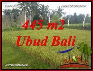 Beautiful Property Ubud Pejeng Bali 445 m2 Land for sale TJUB695