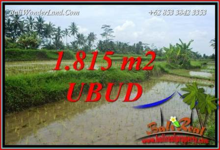 Beautiful Land in Ubud Bali for sale TJUB703