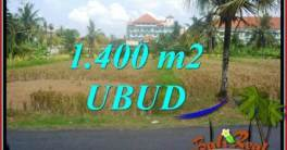 Beautiful Property Land in Ubud Bali for sale TJUB709