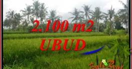 Exotic Land for sale in Ubud TJUB710