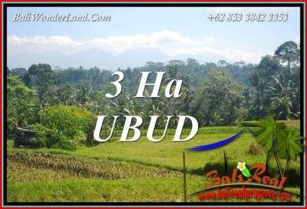 Exotic 30,000 m2 Land for sale in Ubud Tegalalang Bali TJUB718