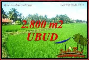 Affordable Ubud Land for sale TJUB726