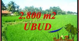 Affordable Ubud Land for sale TJUB726