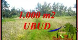 Ubud Pejeng Bali Land for sale TJUB727