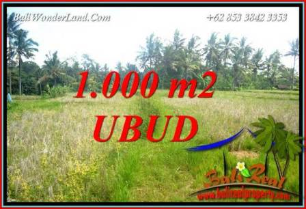 Beautiful Property Ubud Pejeng Bali 1,000 m2 Land for sale TJUB727