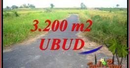 FOR sale Beautiful Property 3,200 m2 Land in Ubud Singapadu TJUB736
