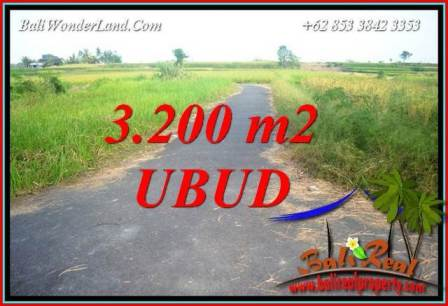 Magnificent Property 3,200 m2 Land sale in Ubud Singapadu Bali TJUB736