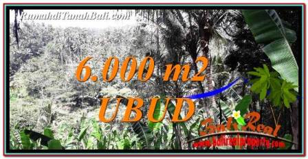 FOR SALE Exotic PROPERTY 6,000 m2 LAND IN Ubud Payangan TJUB750
