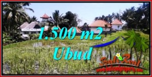 Affordable PROPERTY LAND FOR SALE IN UBUD BALI TJUB744